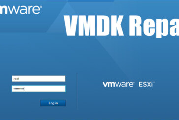 VMDK Repair via SSH (ESXi)
